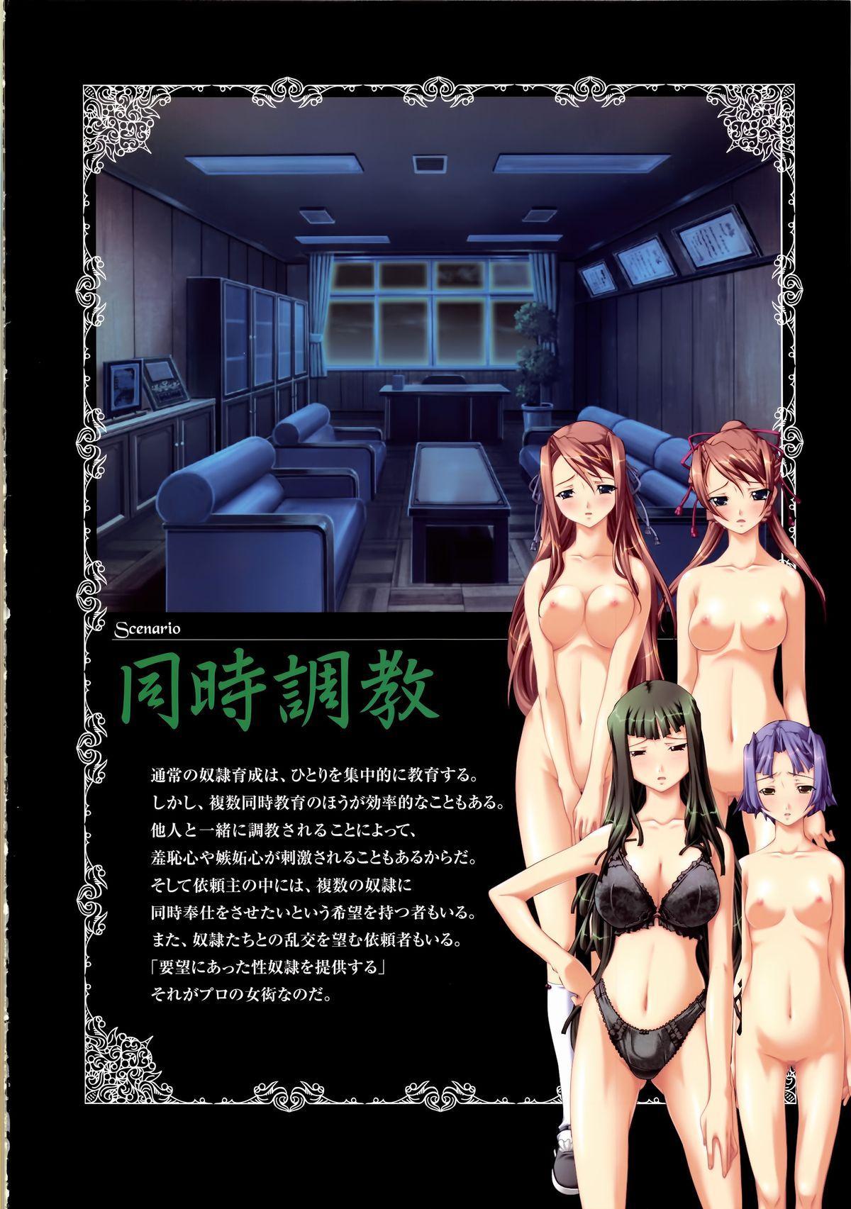 Saint Dorei Gakuen Visual Fan Book 72