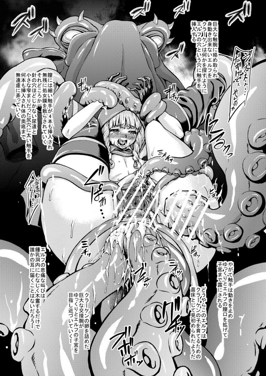 Dragon's Crown no Omake Hon 4