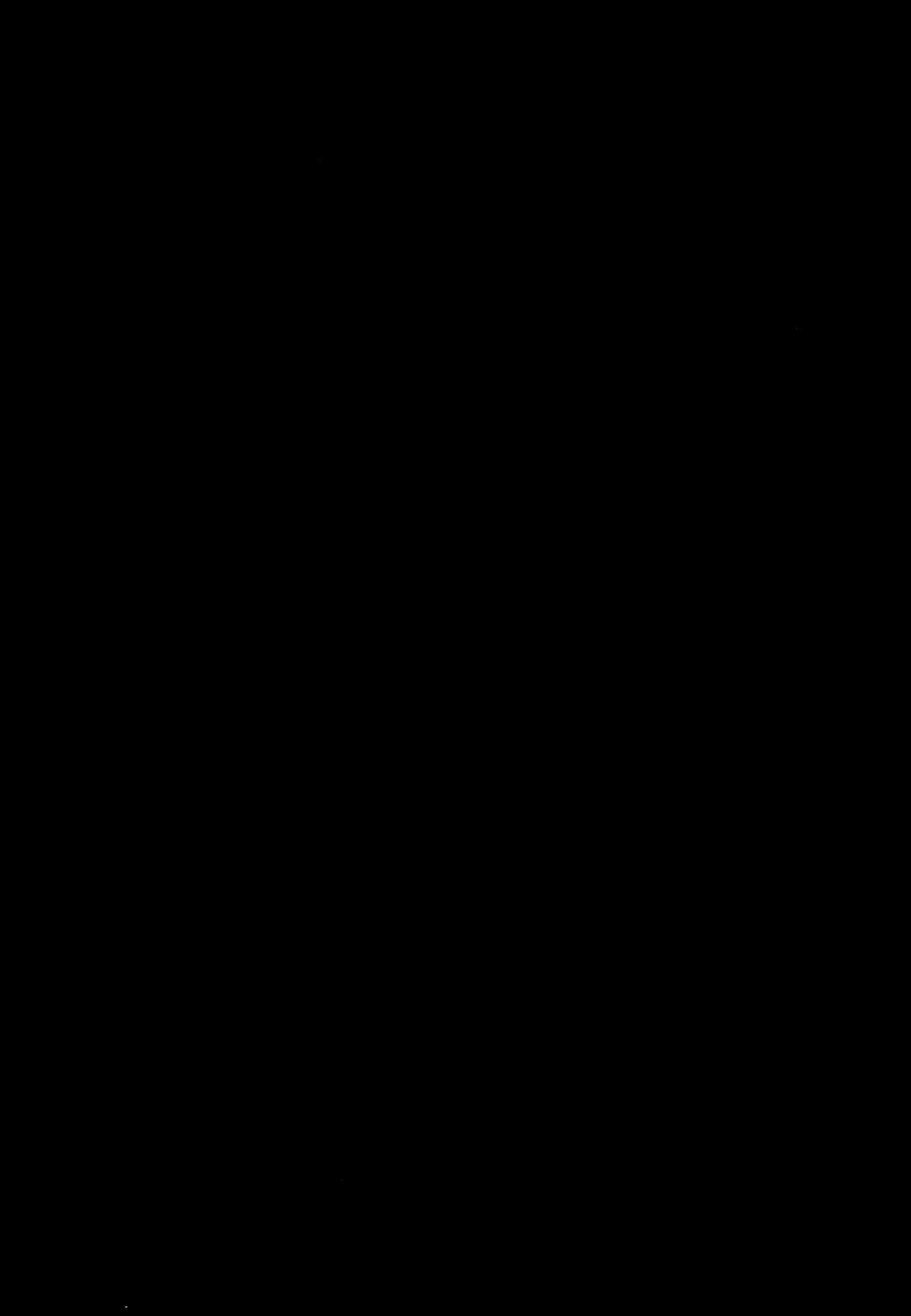 Gekishin Ni 34