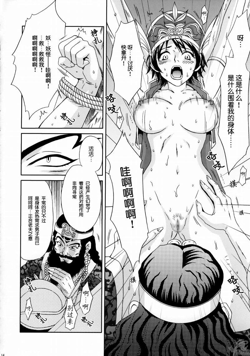 In Sangoku Musou Rikuson Gaiden 12