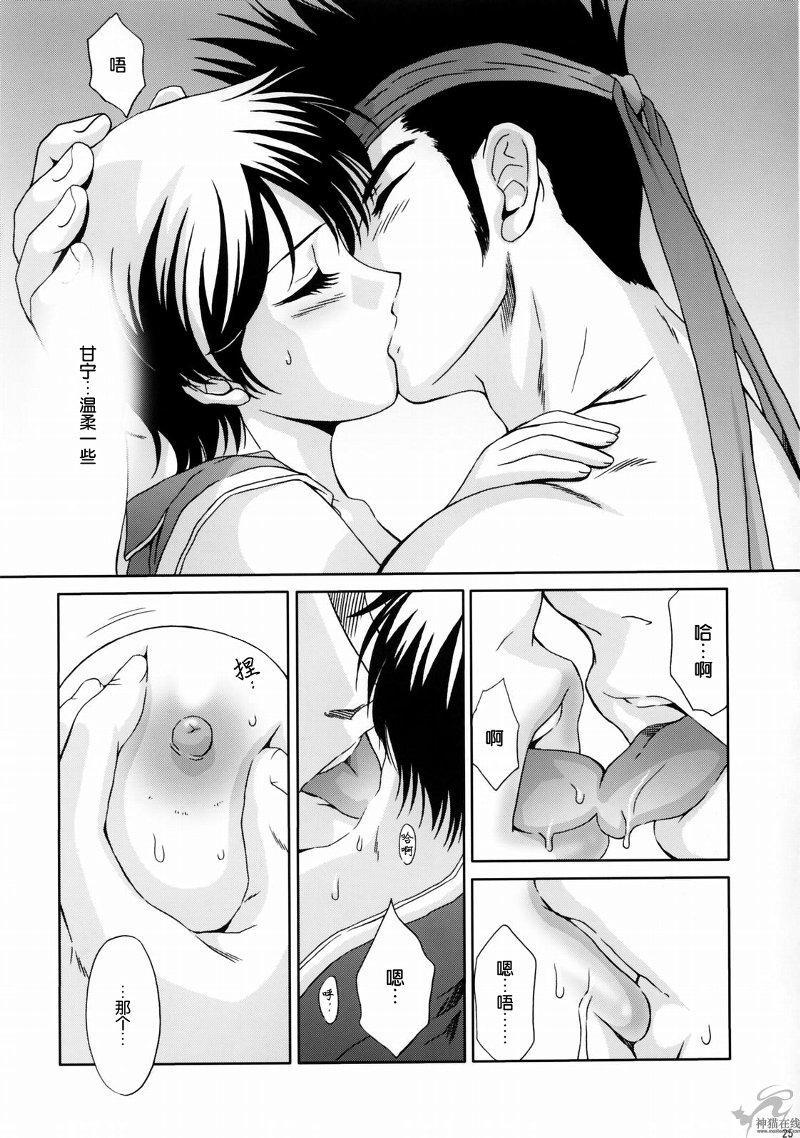 In Sangoku Musou Rikuson Gaiden 23