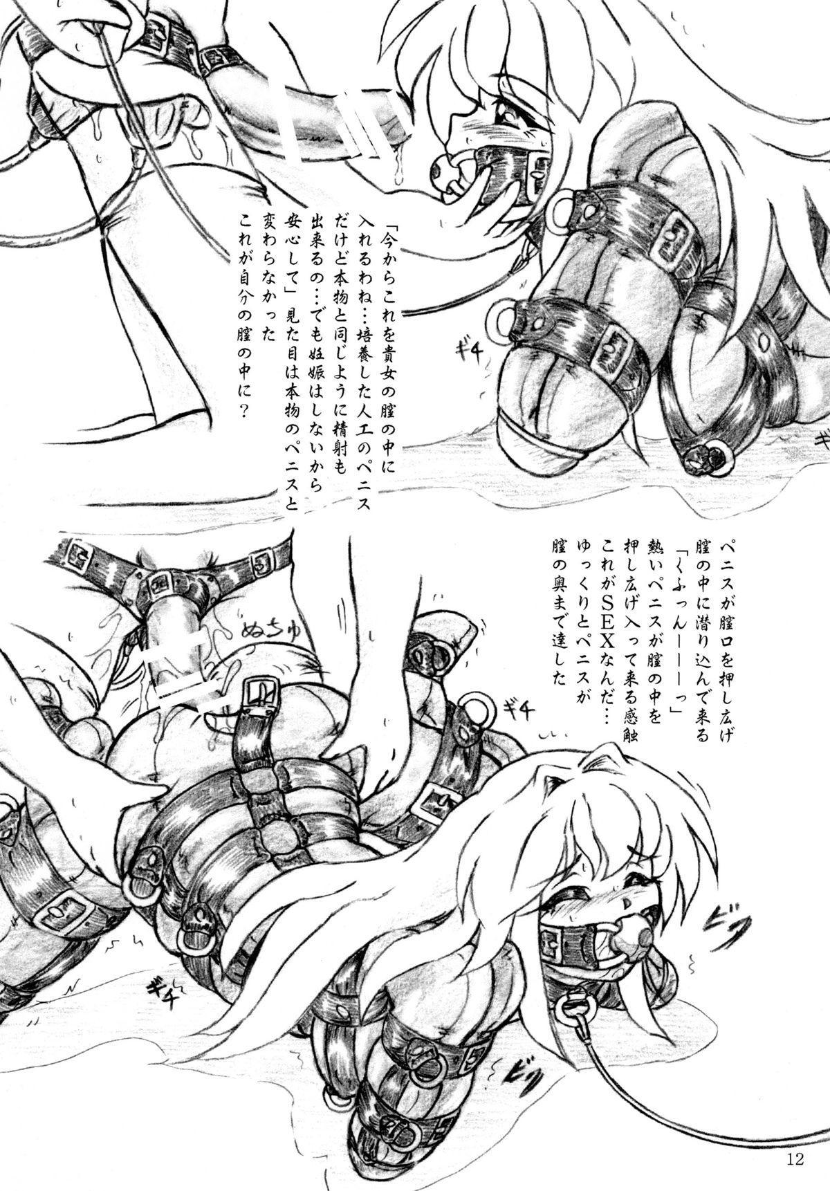 Seiyoku Shinryousho 11
