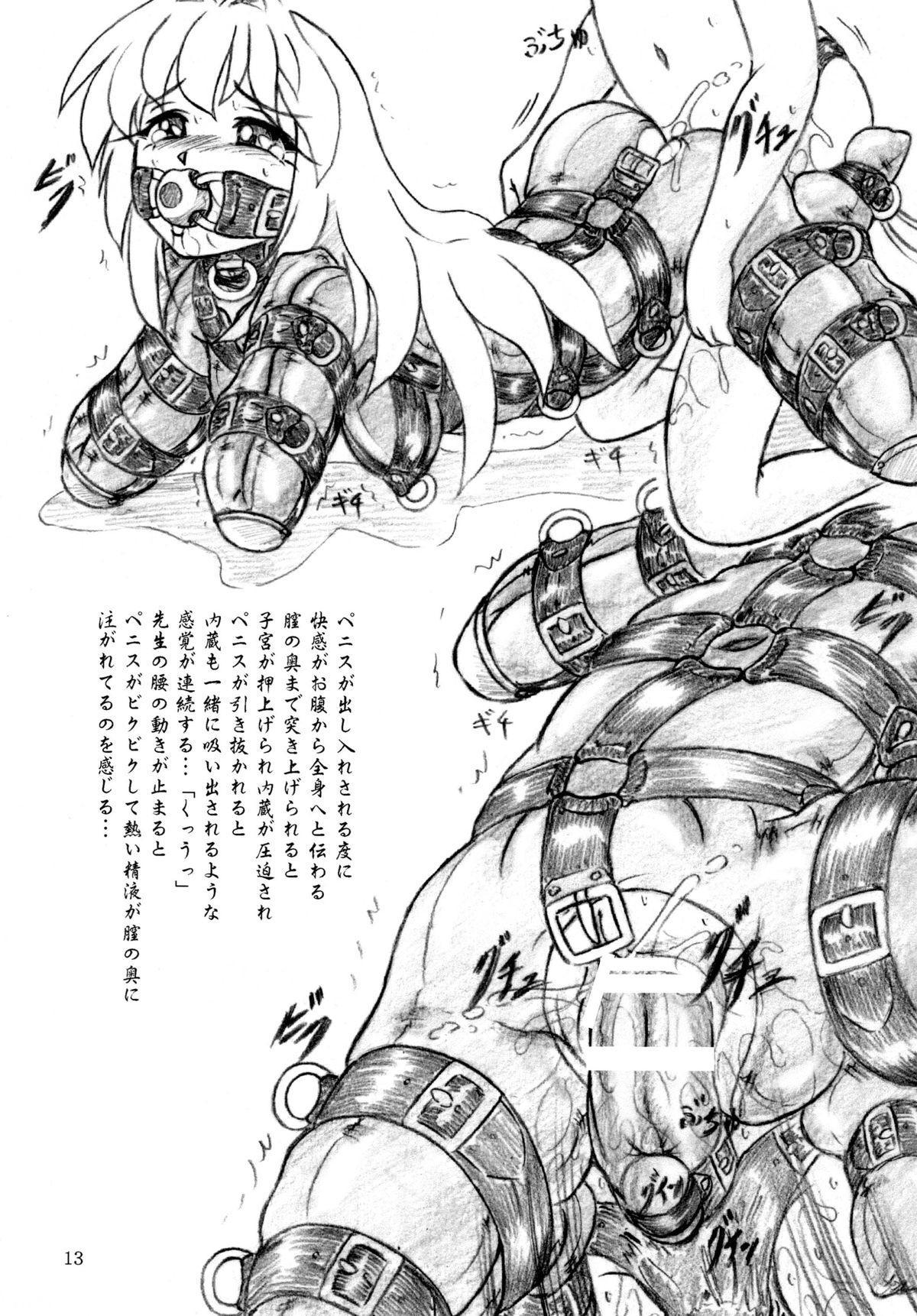 Seiyoku Shinryousho 12