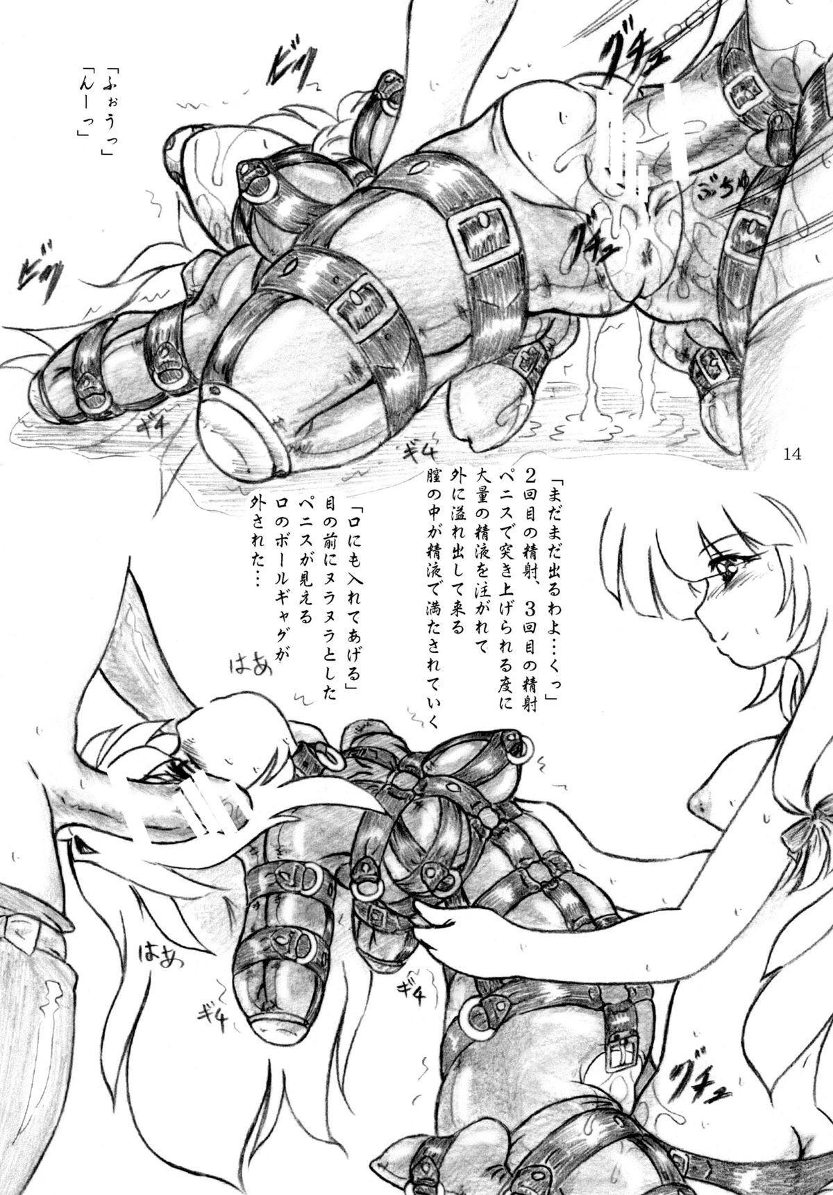 Seiyoku Shinryousho 13