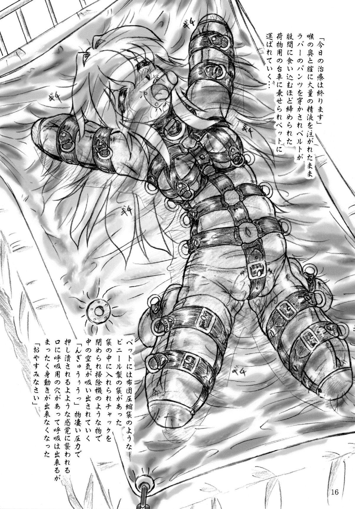 Seiyoku Shinryousho 15