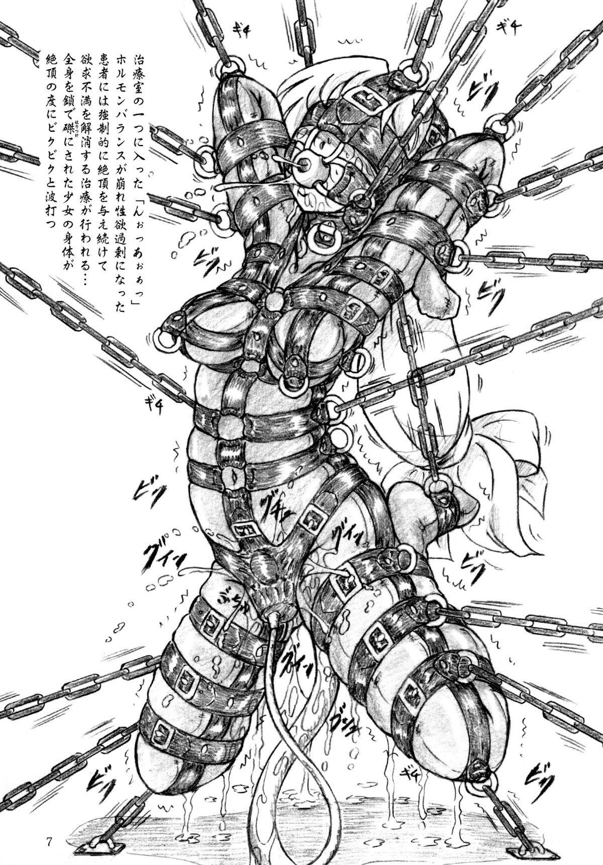 Seiyoku Shinryousho 6