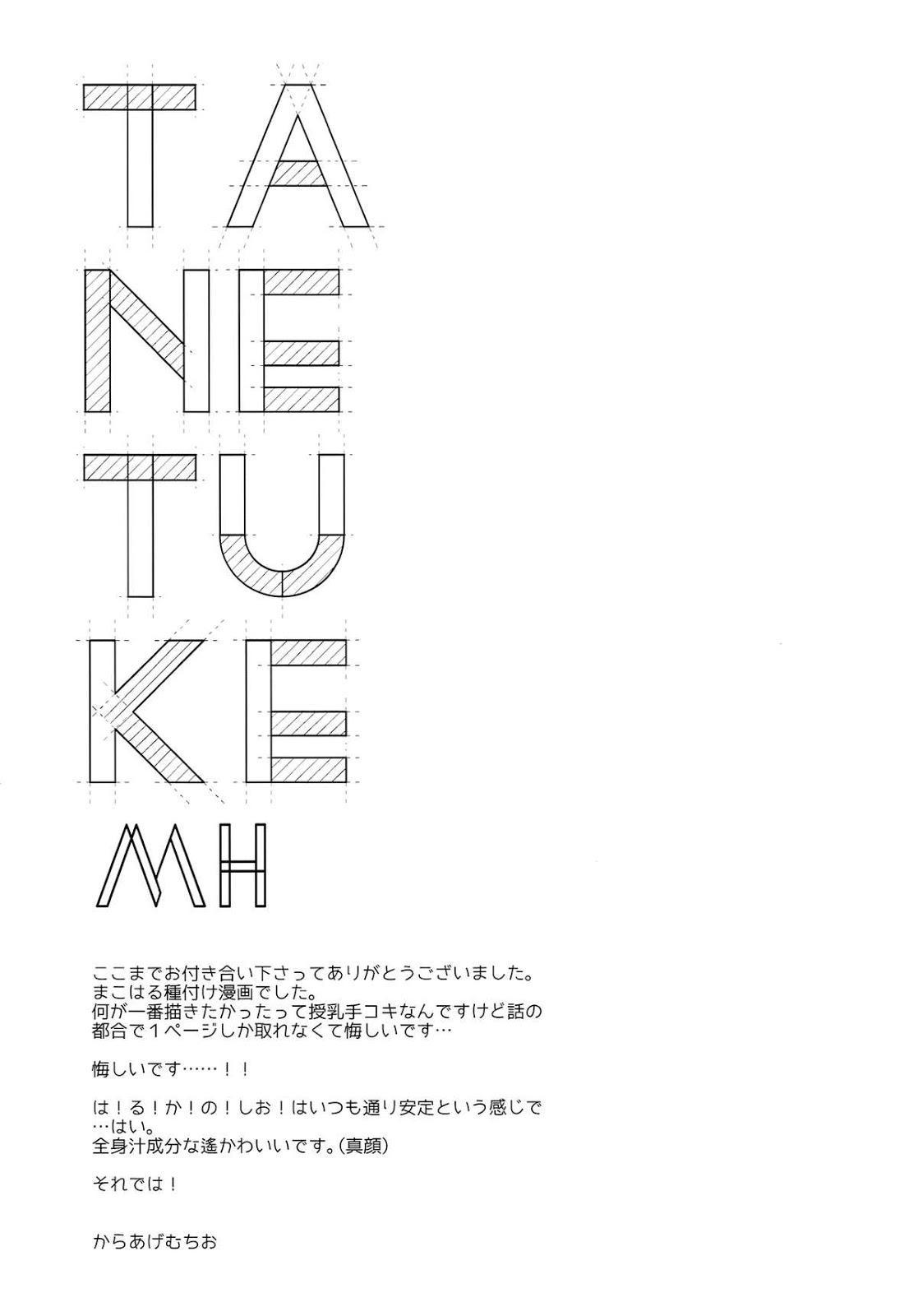 TANETUKE MH 19