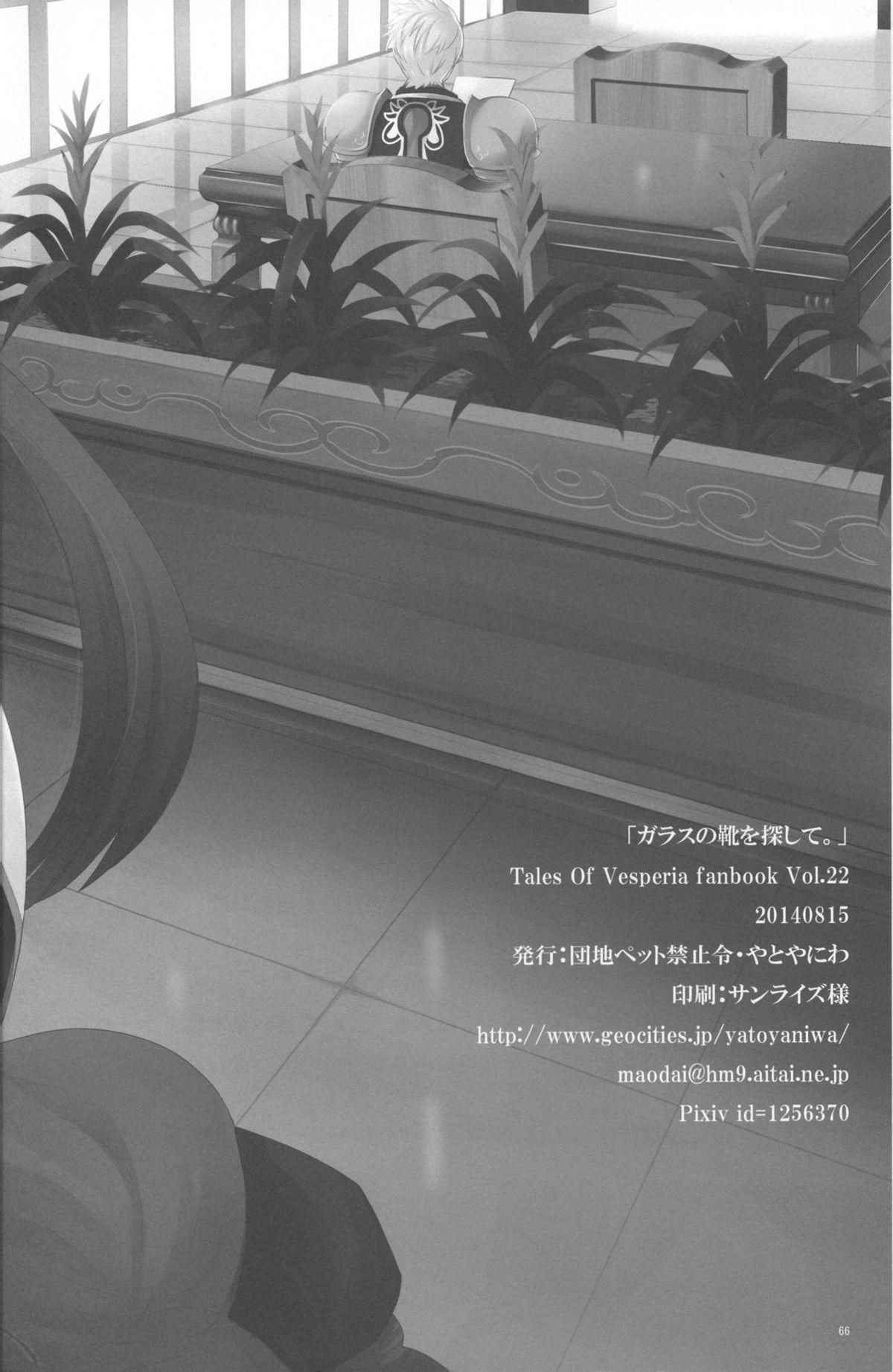 Glass no Kutsu o Sagashite 65