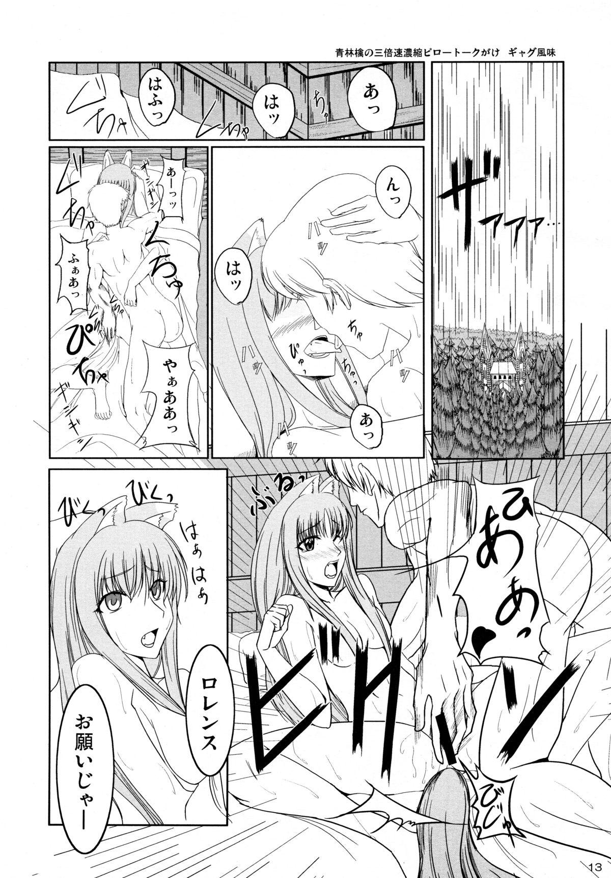 Ookami to Ringo no Hachimitsuzuke 12