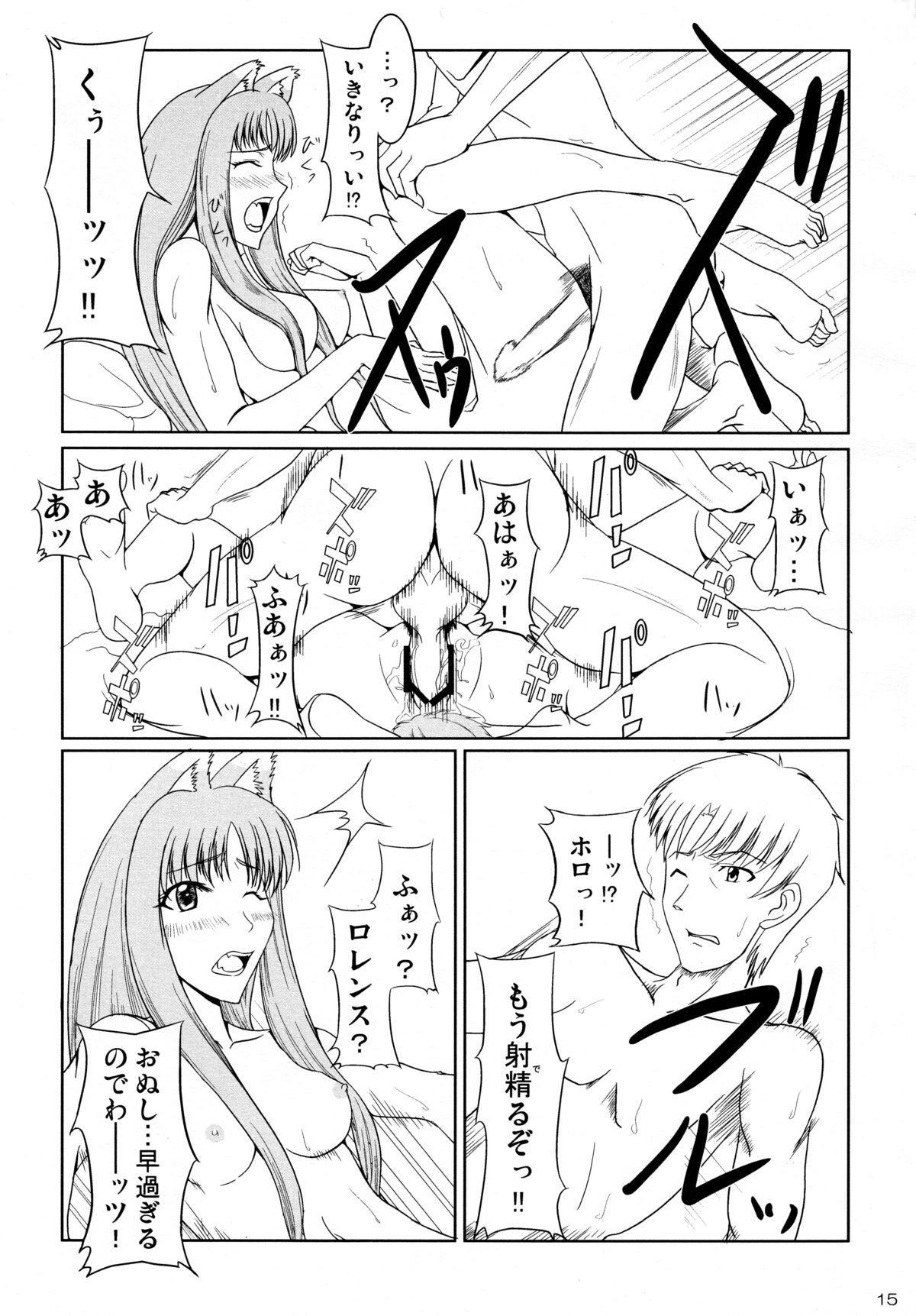 Ookami to Ringo no Hachimitsuzuke 14