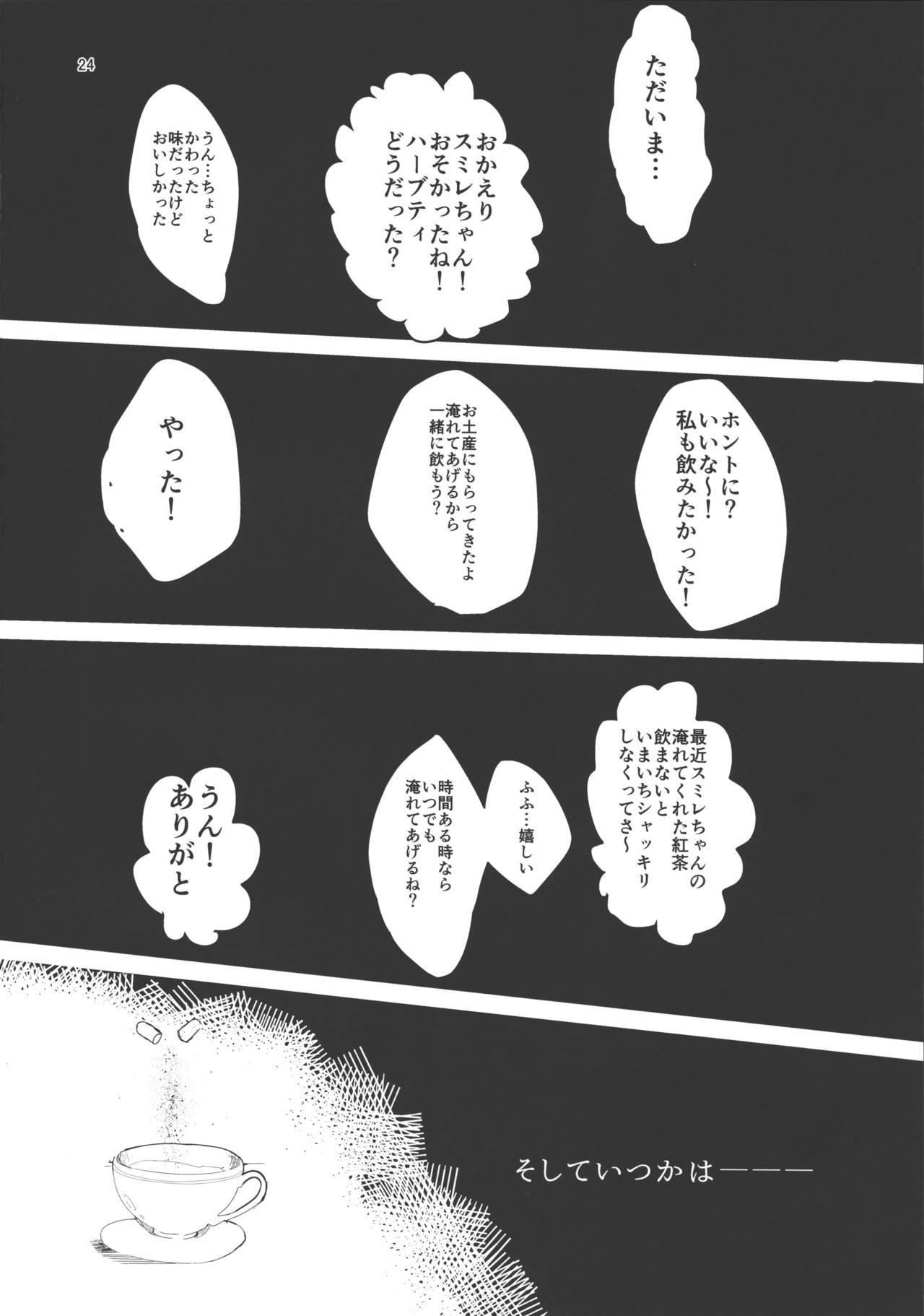 Watashi no Kawaii Akari-chan 23