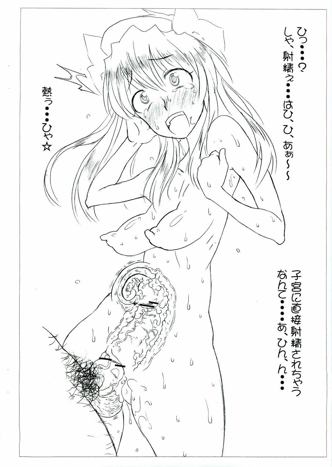 Ryuutai Junkatsu - Dai Danmen 6