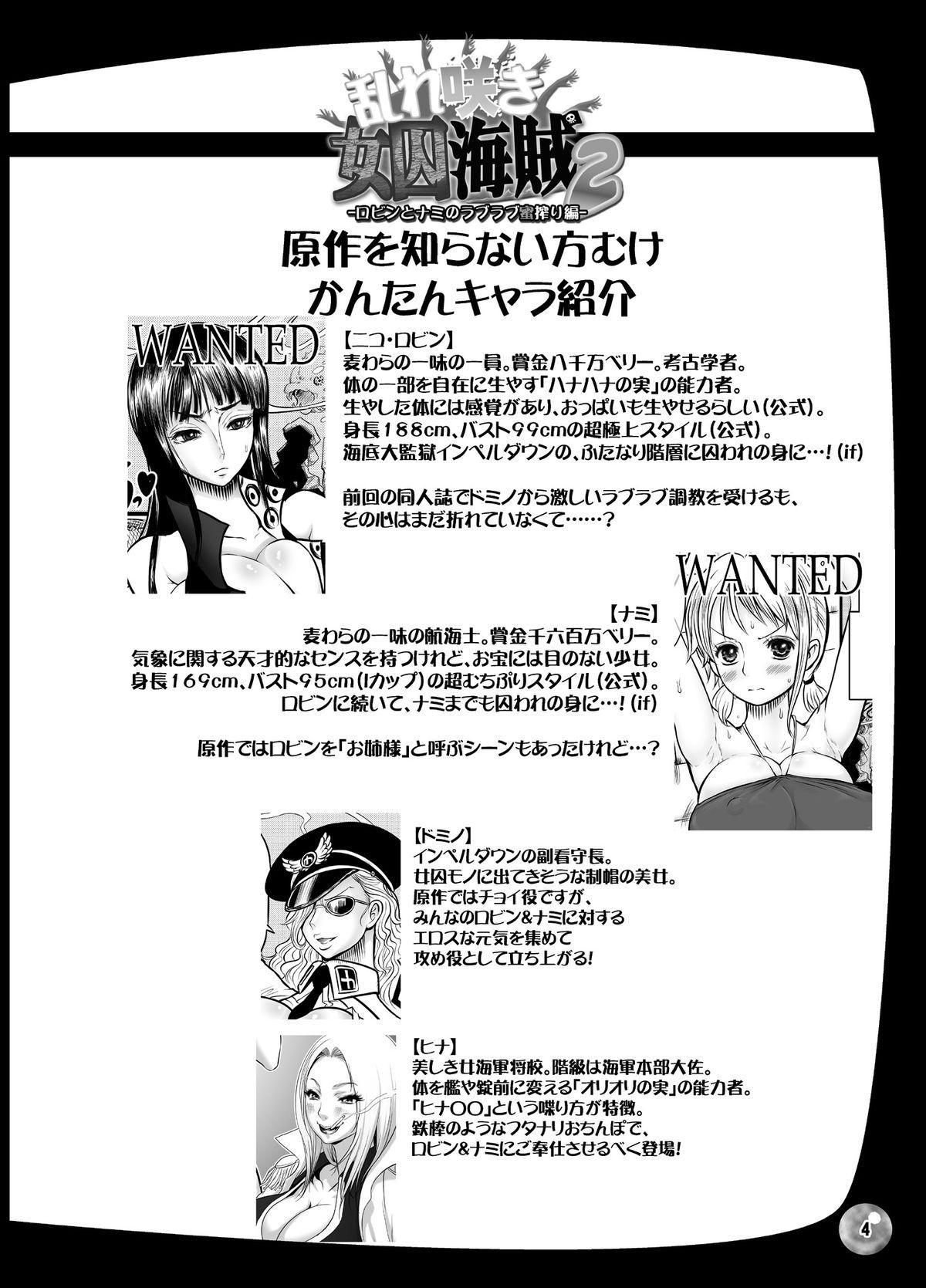 Midarezaki Joshuu Kaizoku 2 3