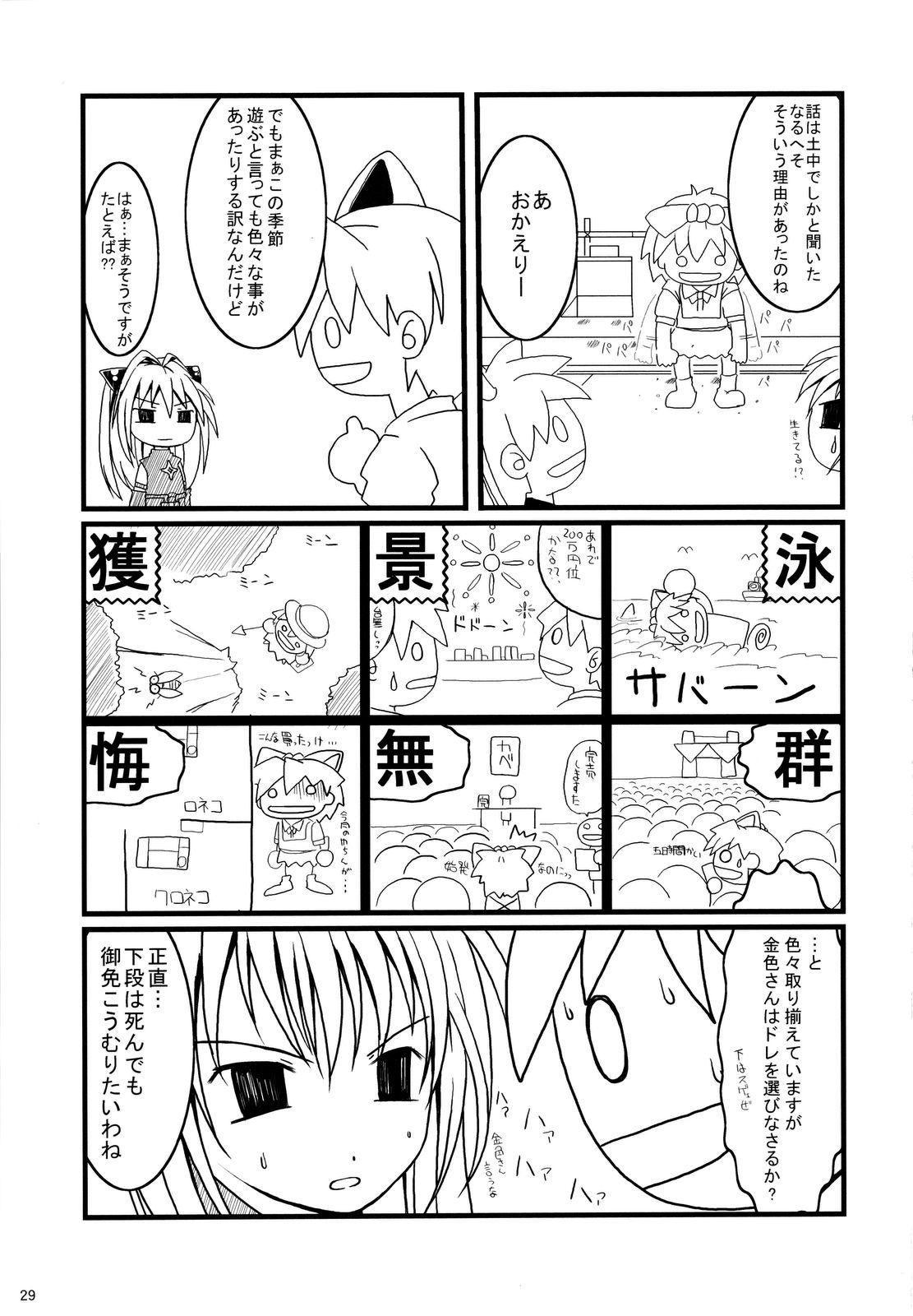 Ero ii wa Seigi 27