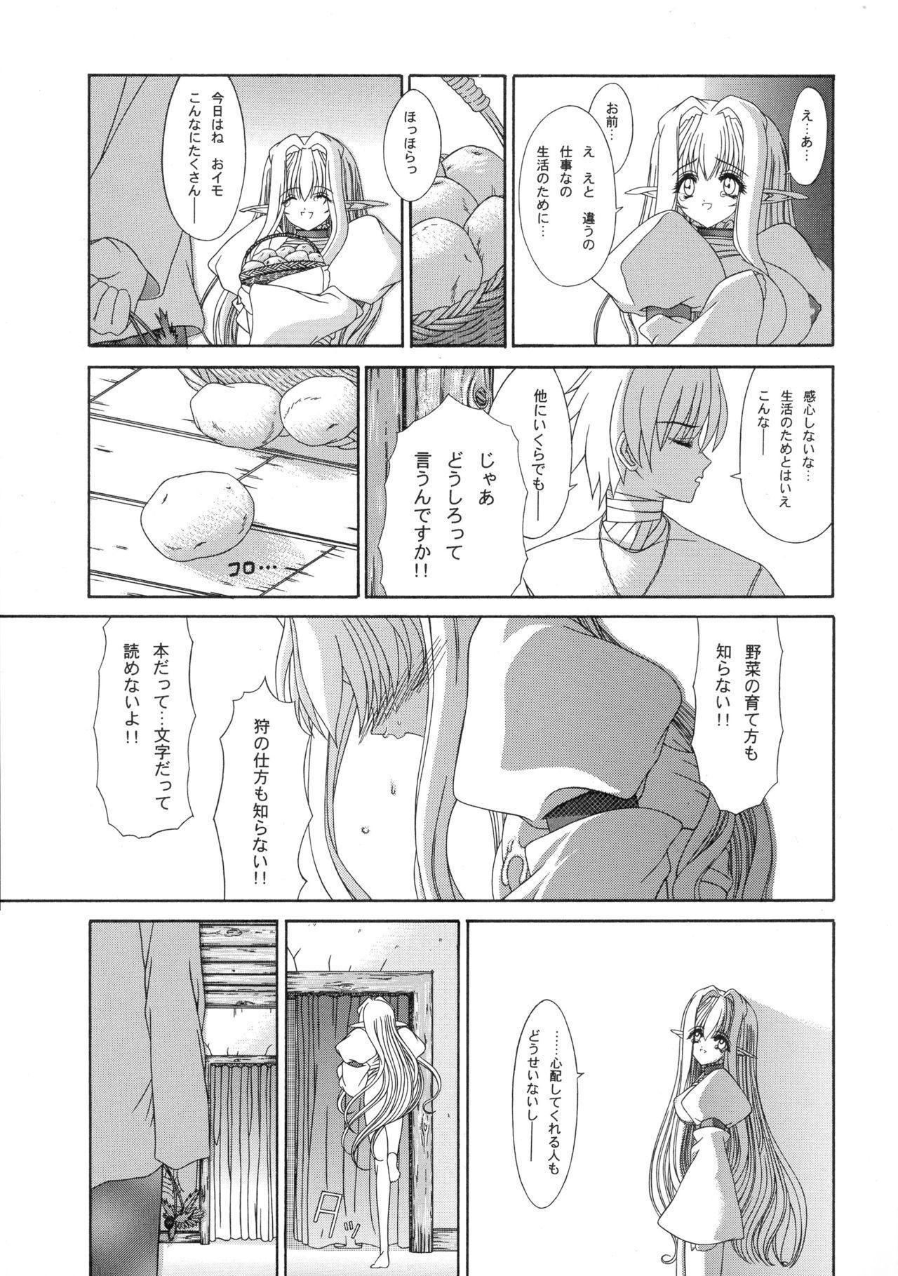 Haiiro no Gensoukyoku 17