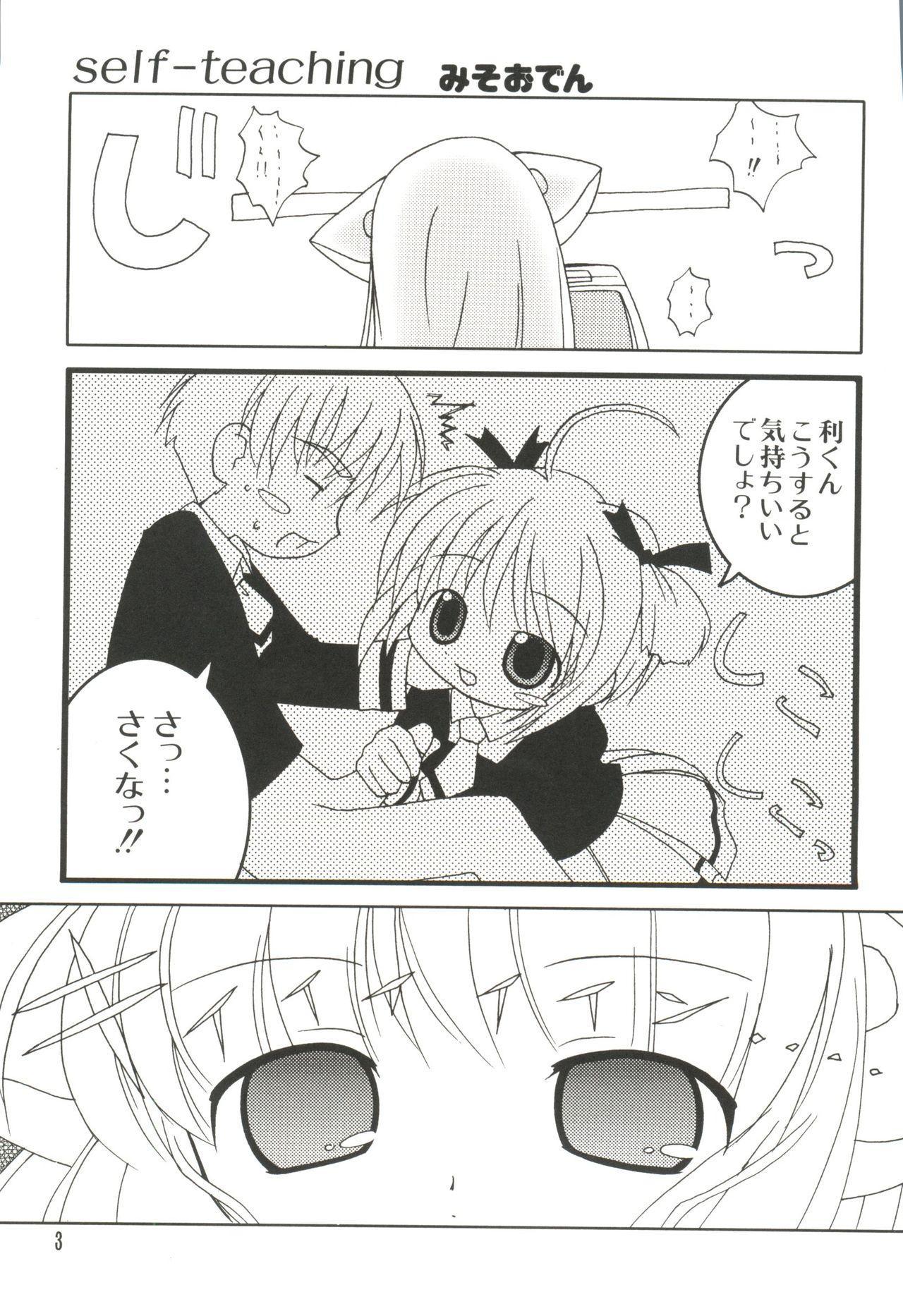 Naru Hina Z 2 2