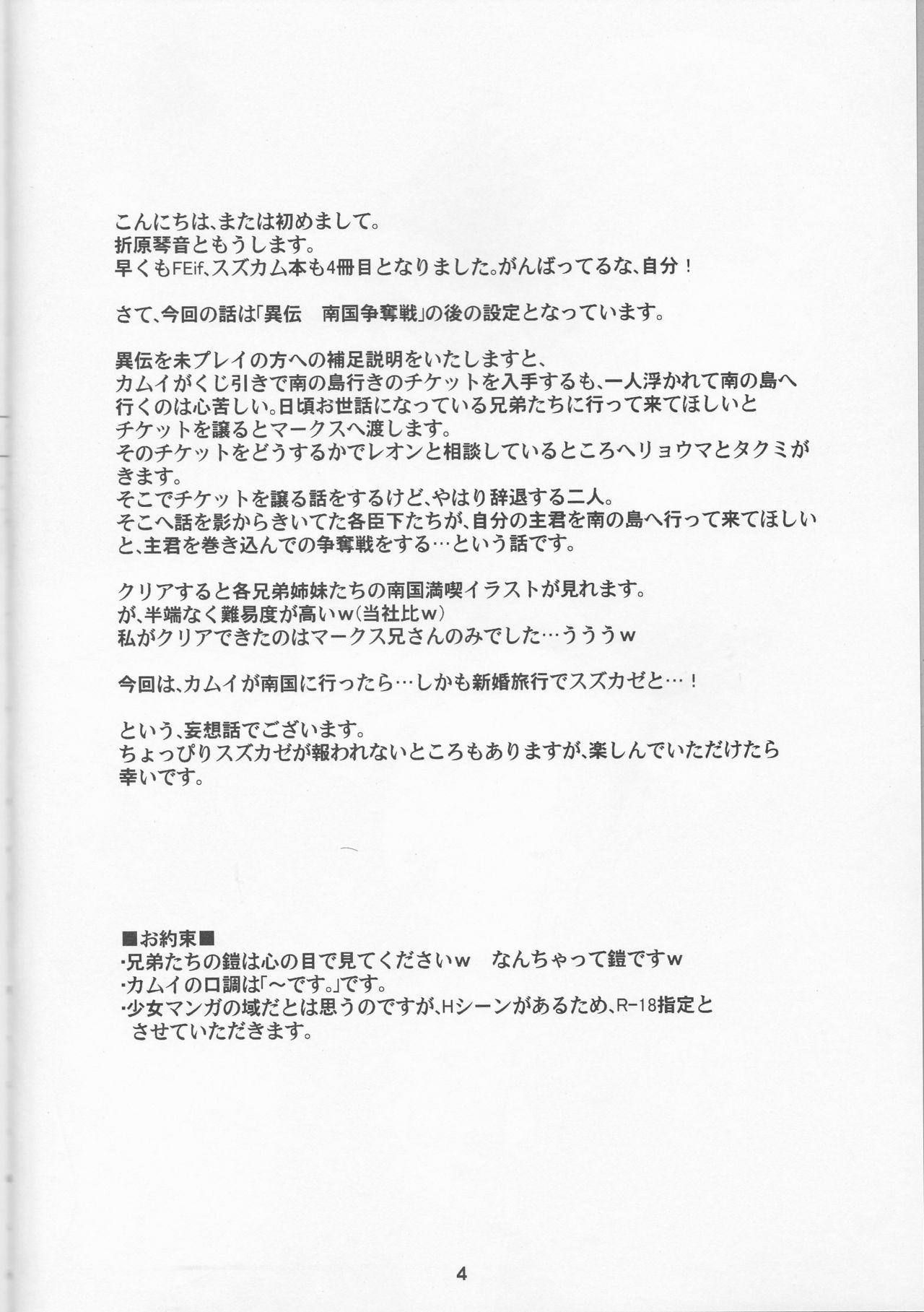 Nangoku e Youkoso 3