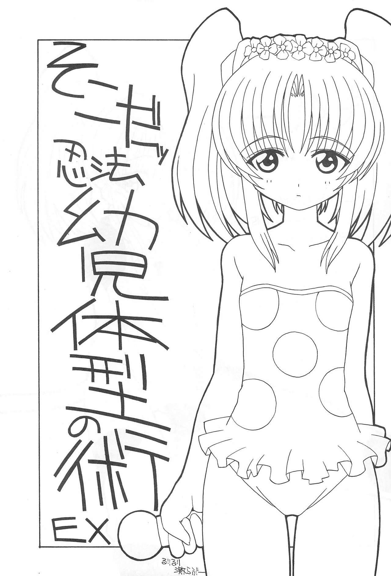 Soko da! Ninpou Youjitaikei no Jutsu EX 2