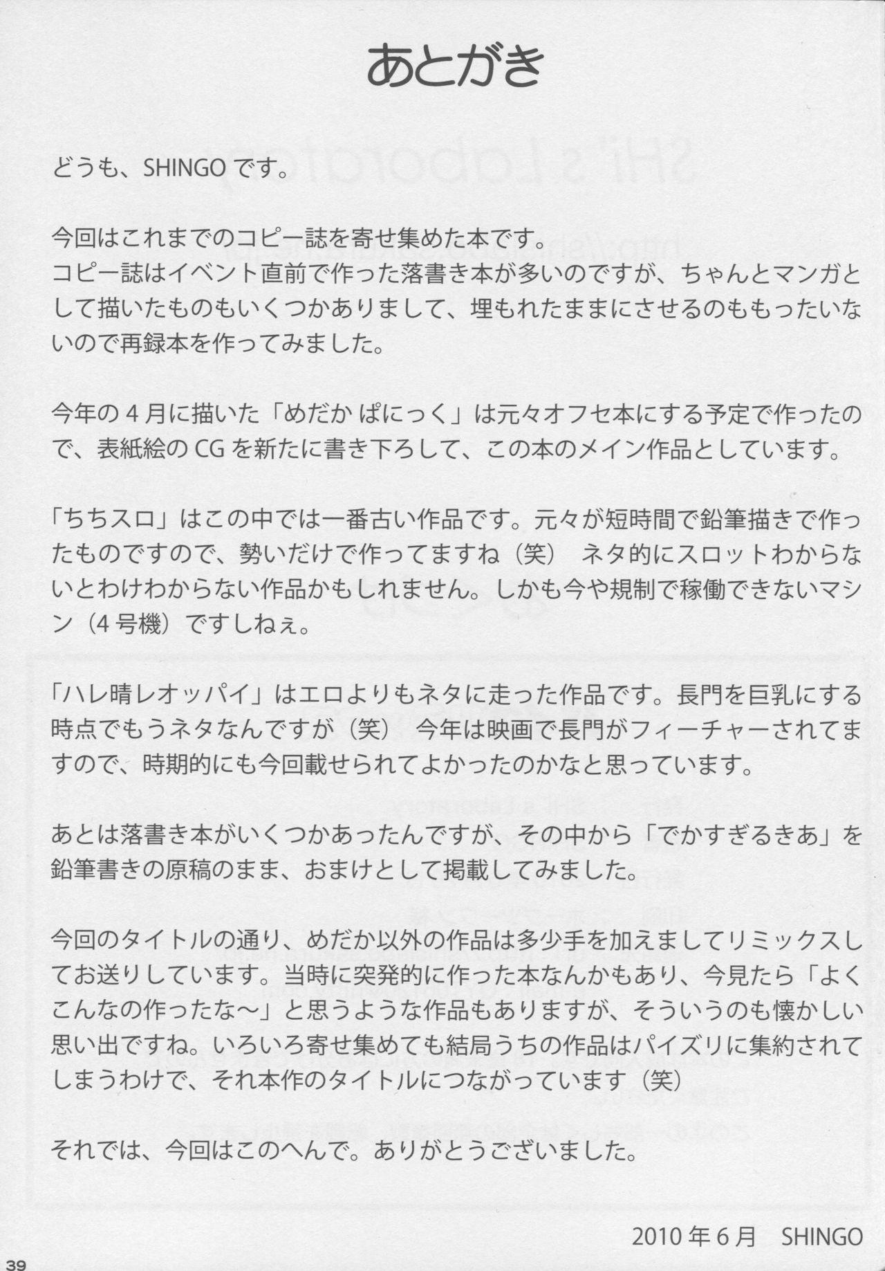 (Tora Matsuri 2010) [SHi's Laboratory (SHINGO)] PAI-Z-ReMix (Various) 39
