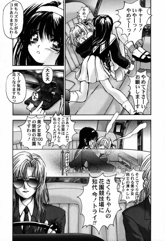Cardcaptor Sakura CLANKE 15