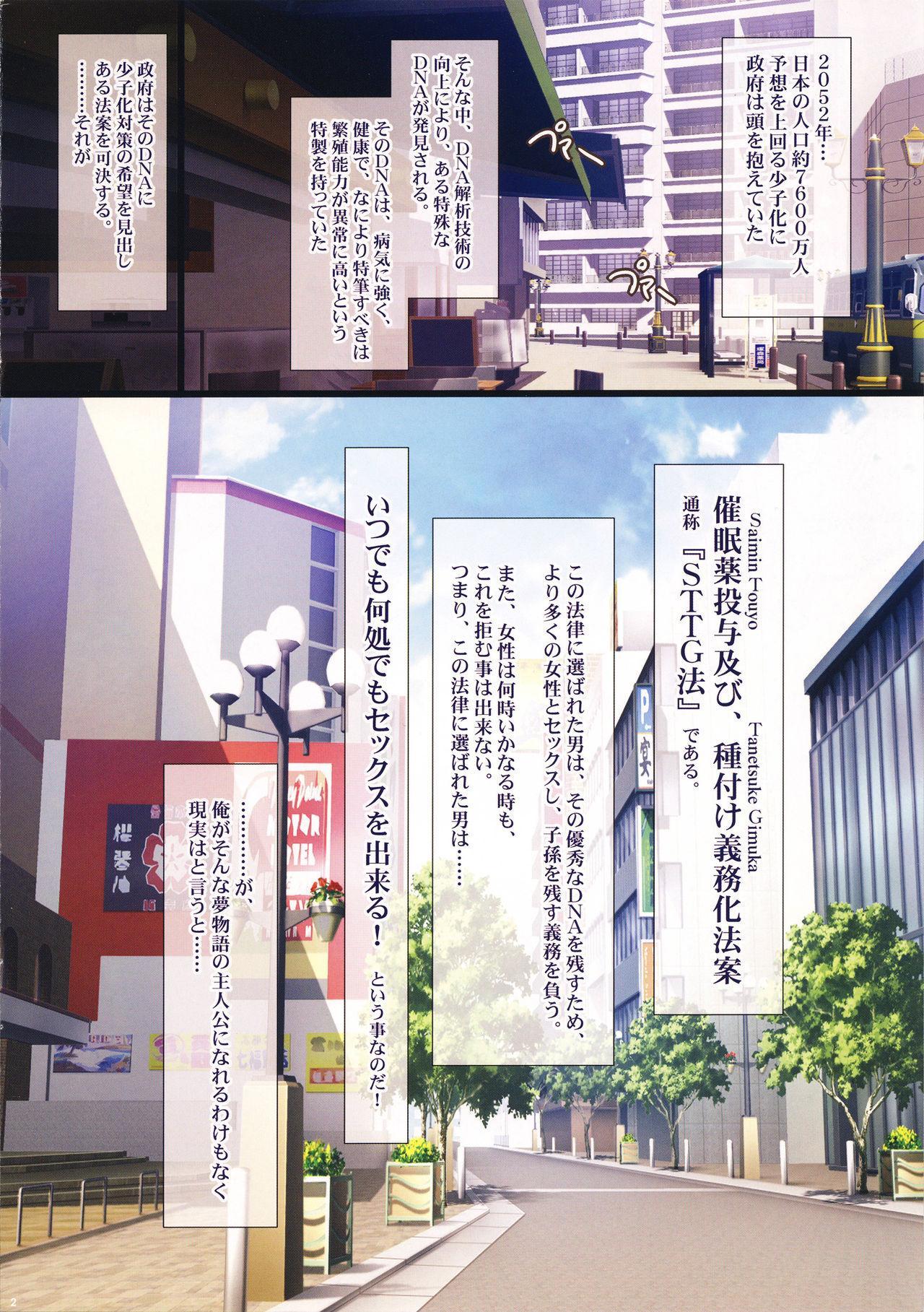 Shoushika Taisaku ni Yoru Tanetsuke Gimuka Houan 1