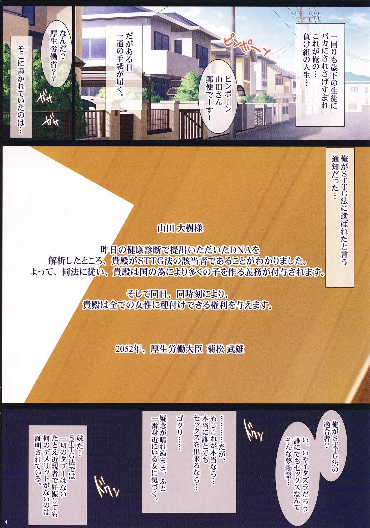 Shoushika Taisaku ni Yoru Tanetsuke Gimuka Houan 3