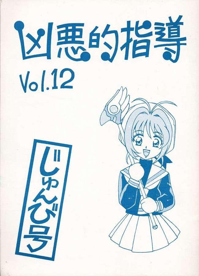 Kyouakuteki Shidou Vol. 12 Junbigou 0