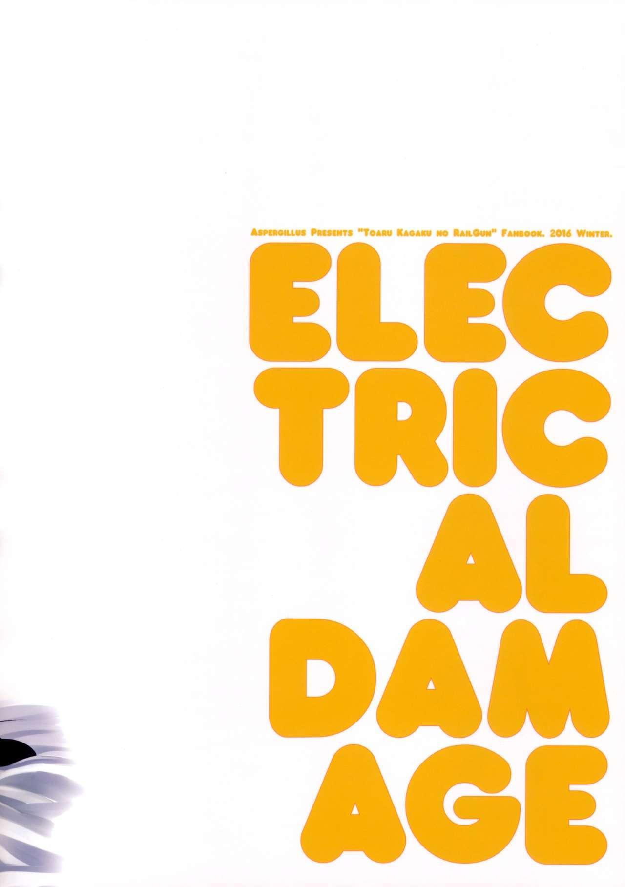 ELECTRICAL DAMAGE 25