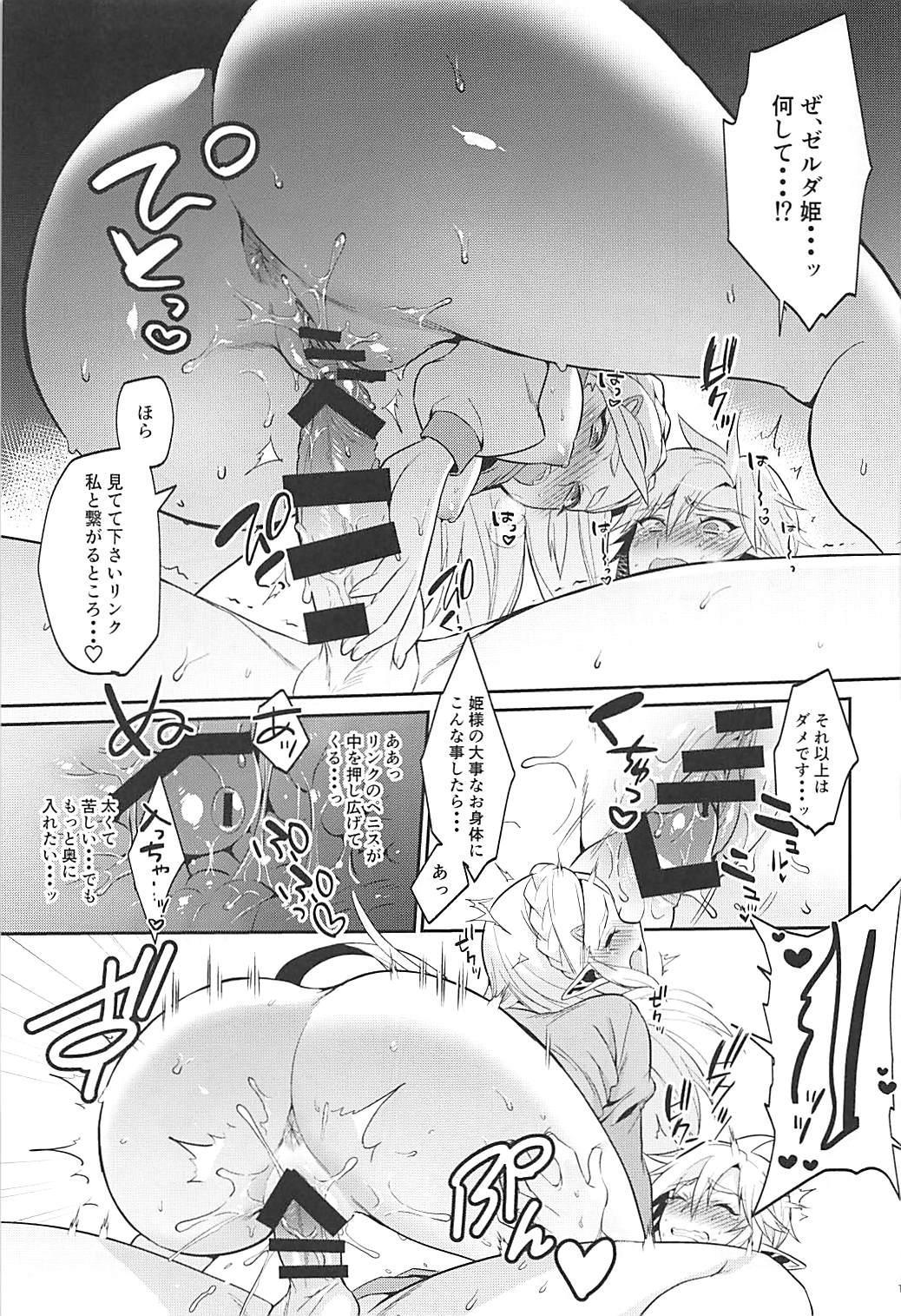 Hyrule Hanei no Tame no Katsudou! 13