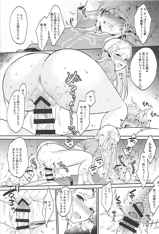 Hyrule Hanei no Tame no Katsudou! 15