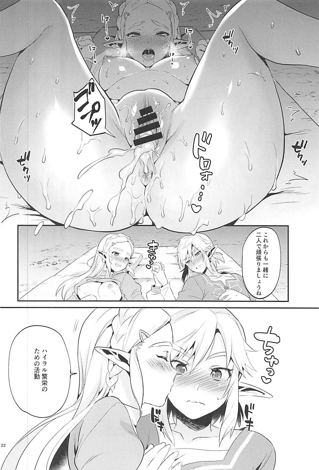 Hyrule Hanei no Tame no Katsudou! 22