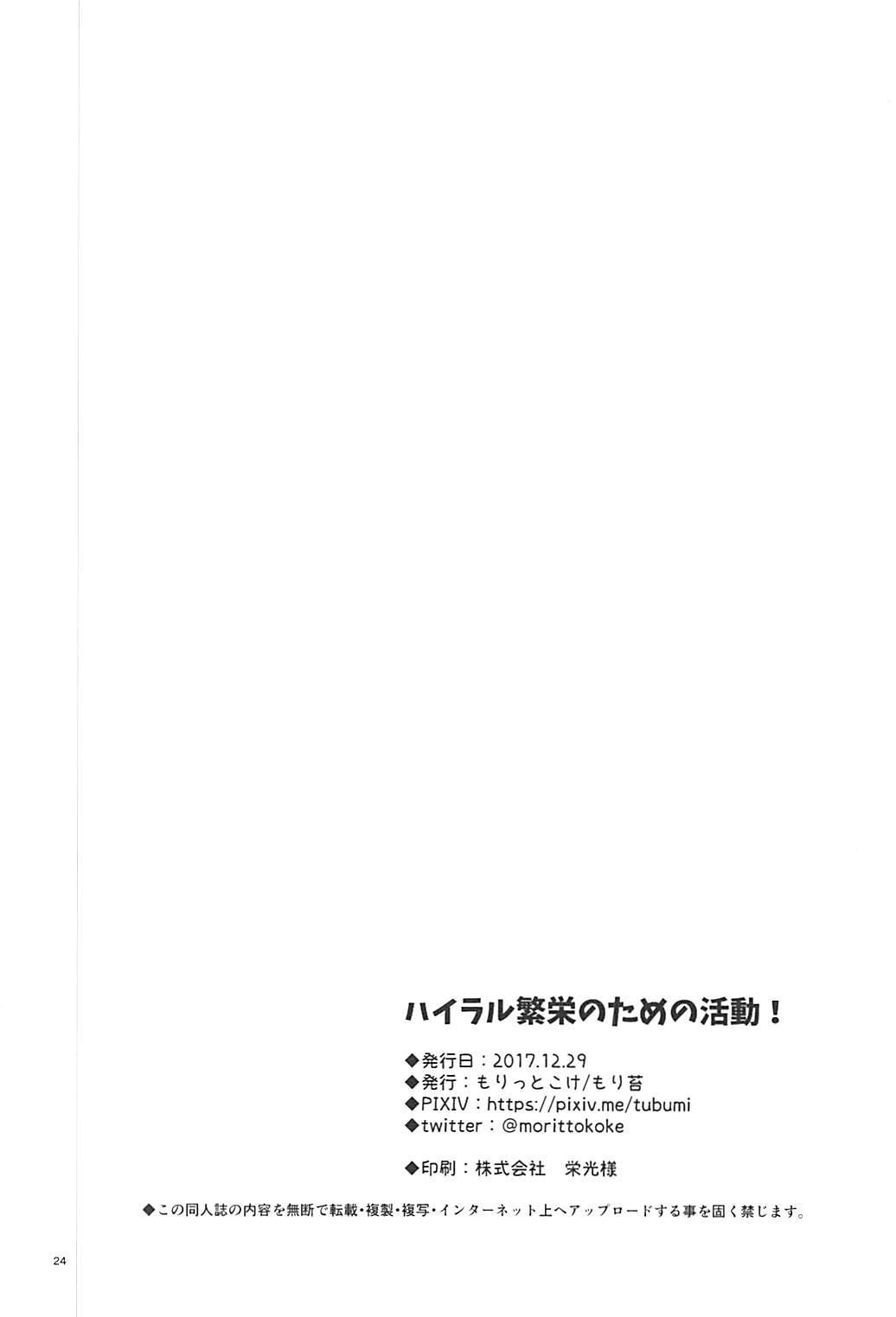 Hyrule Hanei no Tame no Katsudou! 24