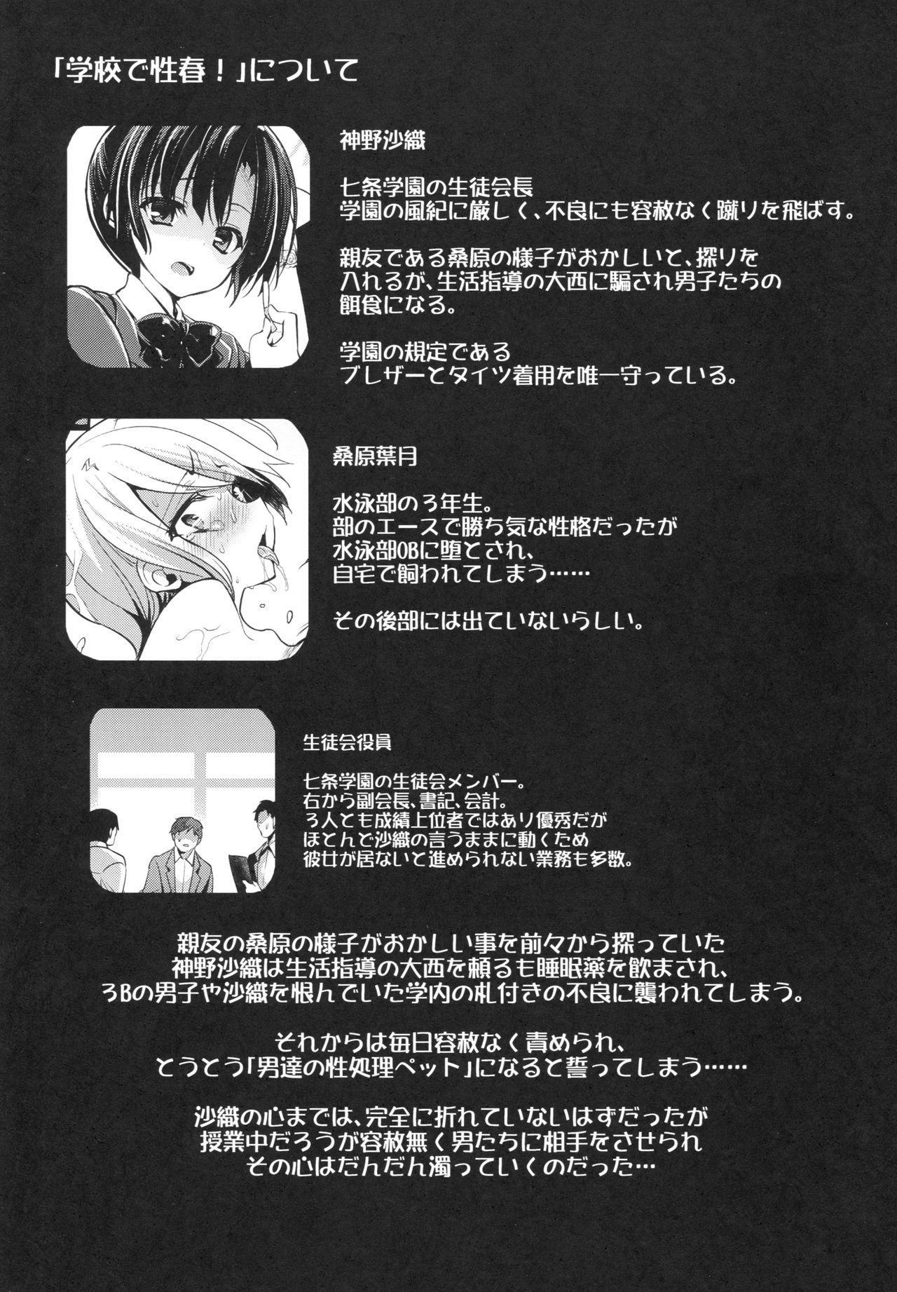 Gakkou de Seishun! 14 2