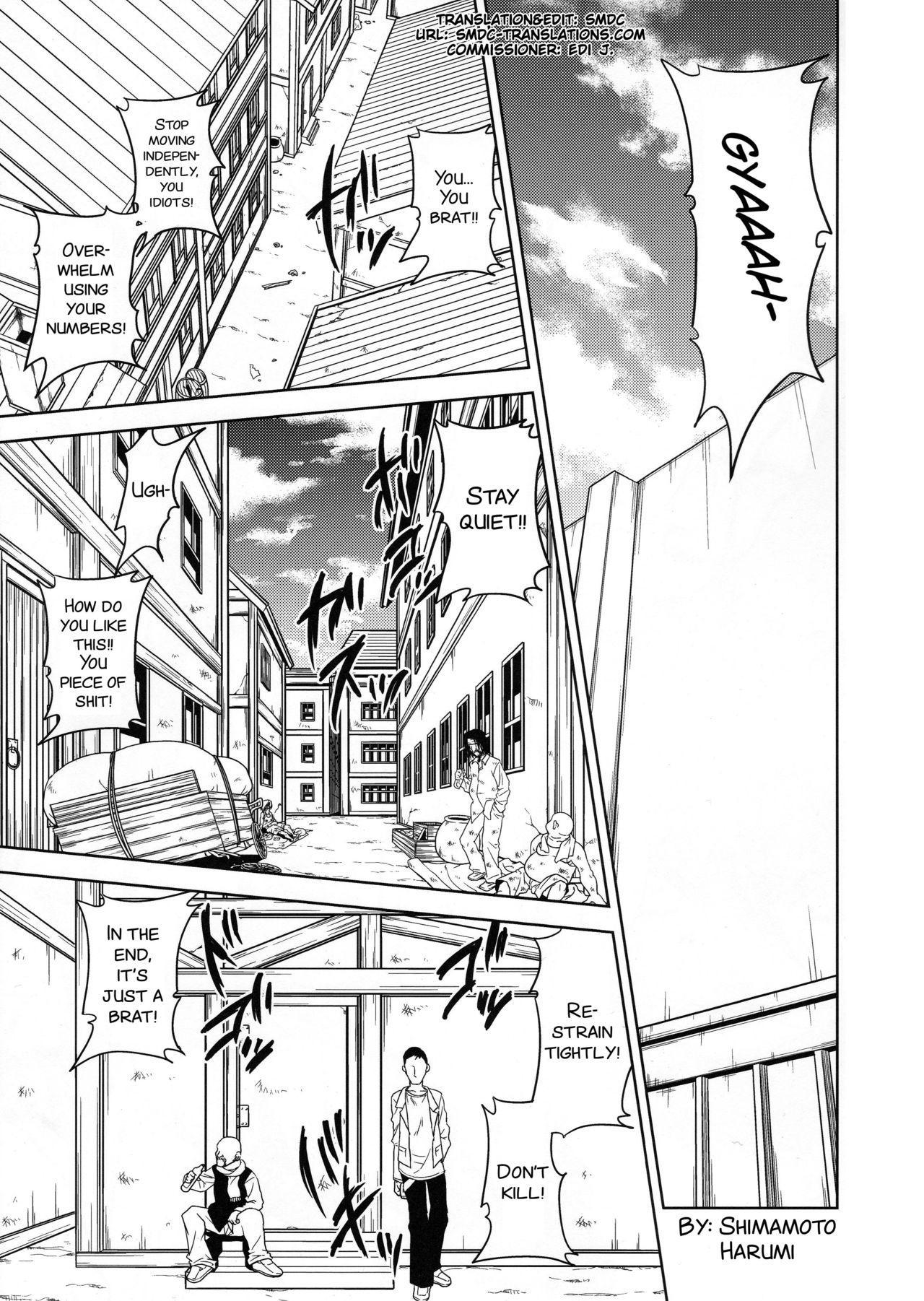 Shingeki no Megami 2
