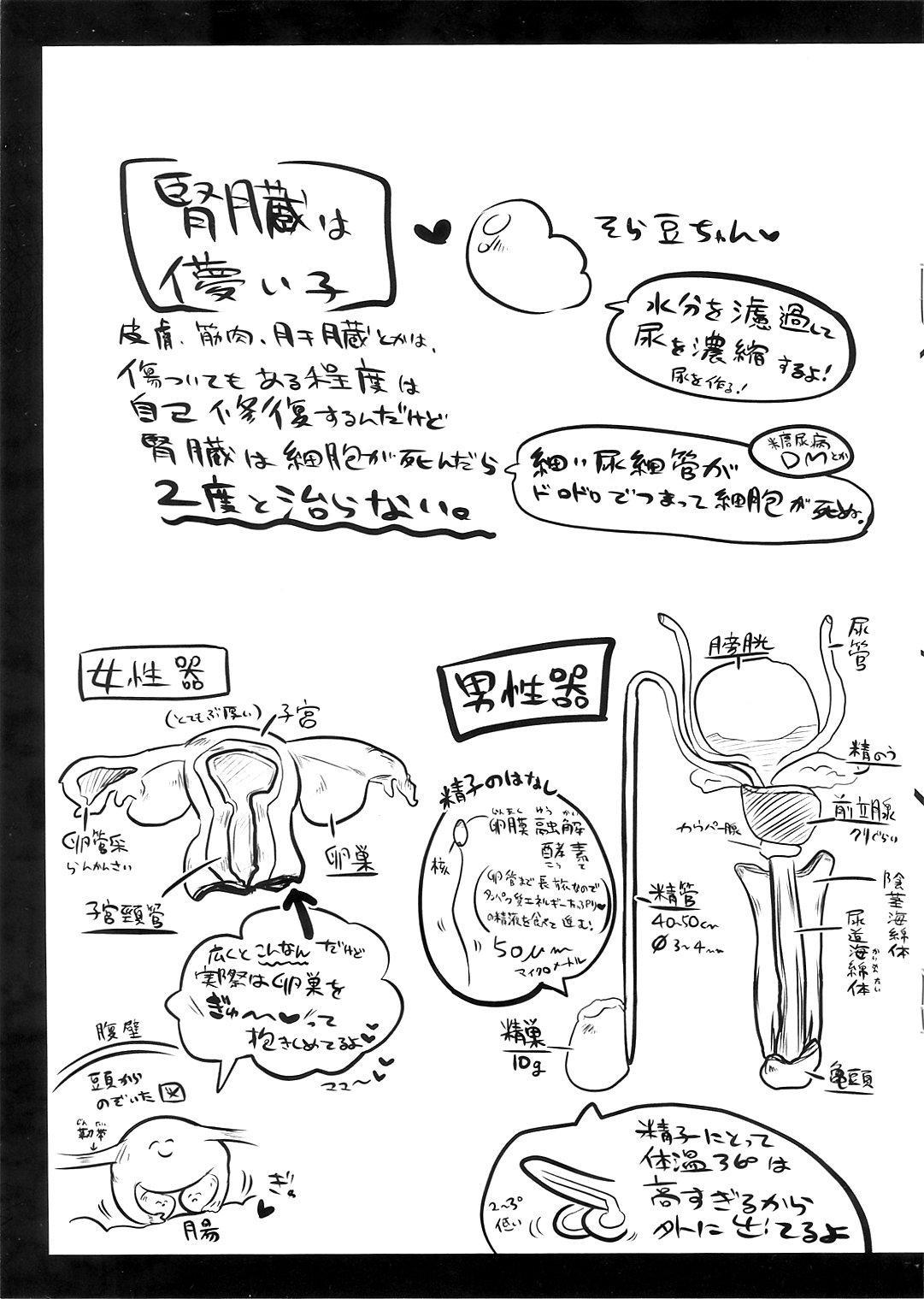 Ryonara no Tame no Kaibou Seiri 14