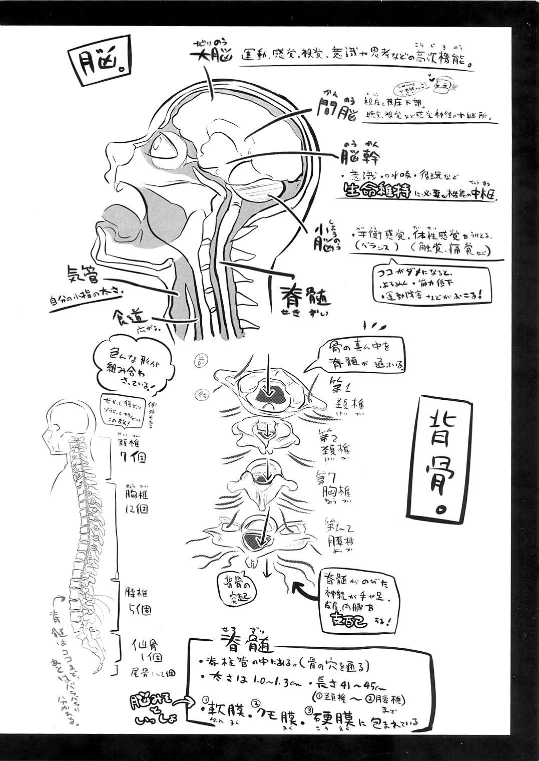 Ryonara no Tame no Kaibou Seiri 15