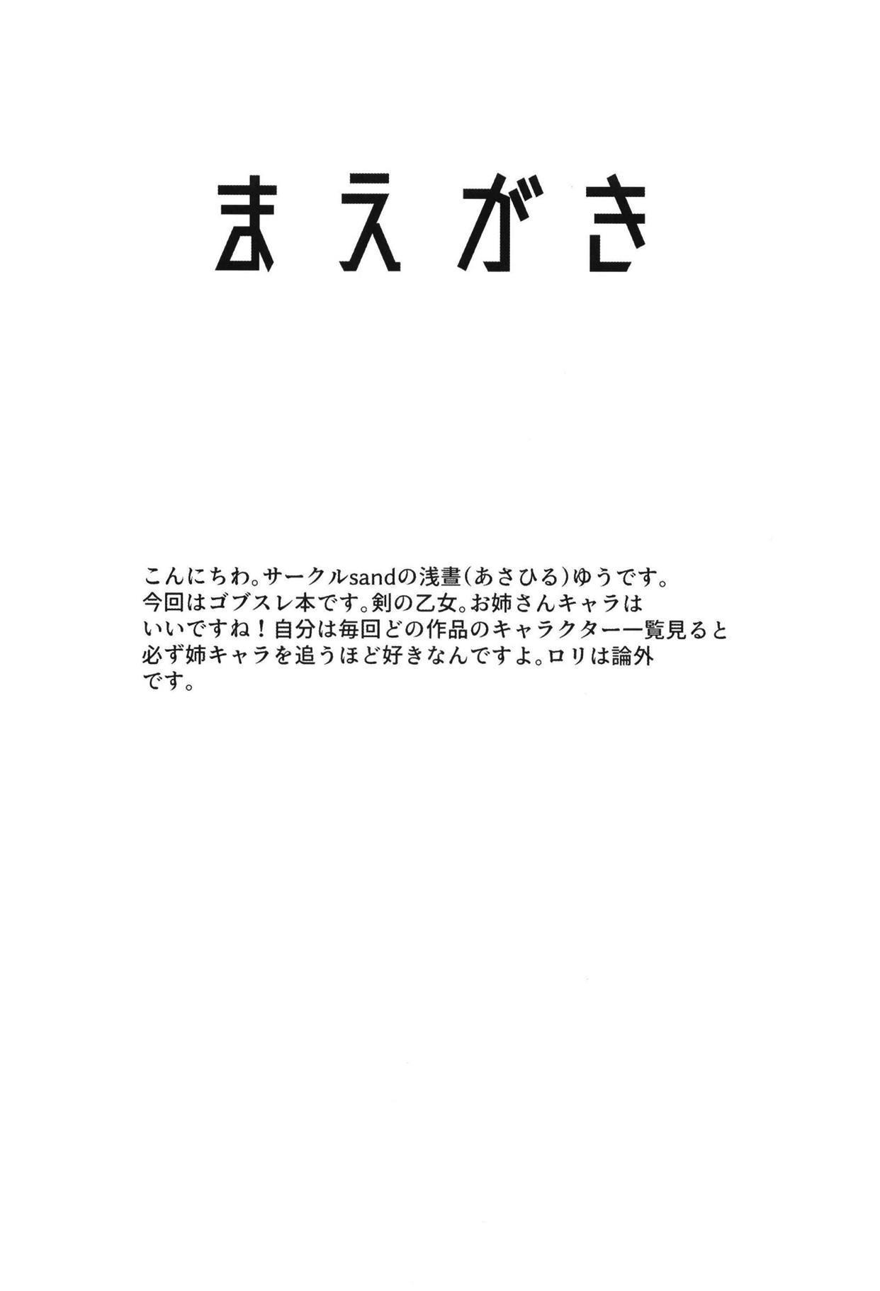 Dare mo Shiranai Tsurugi no Otome no Seiseikatsu 3