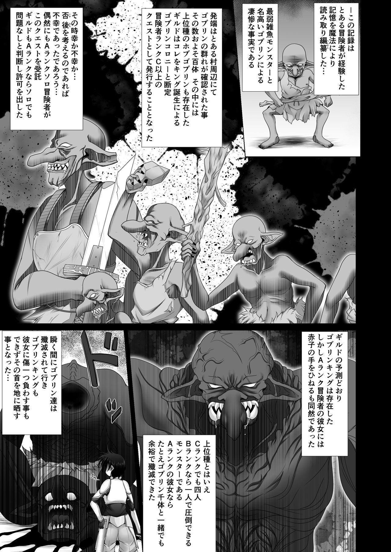 Boukensha Guild Nintei Kikendo Toku S Rank Monster Houkokusho Inmon Goblin 2