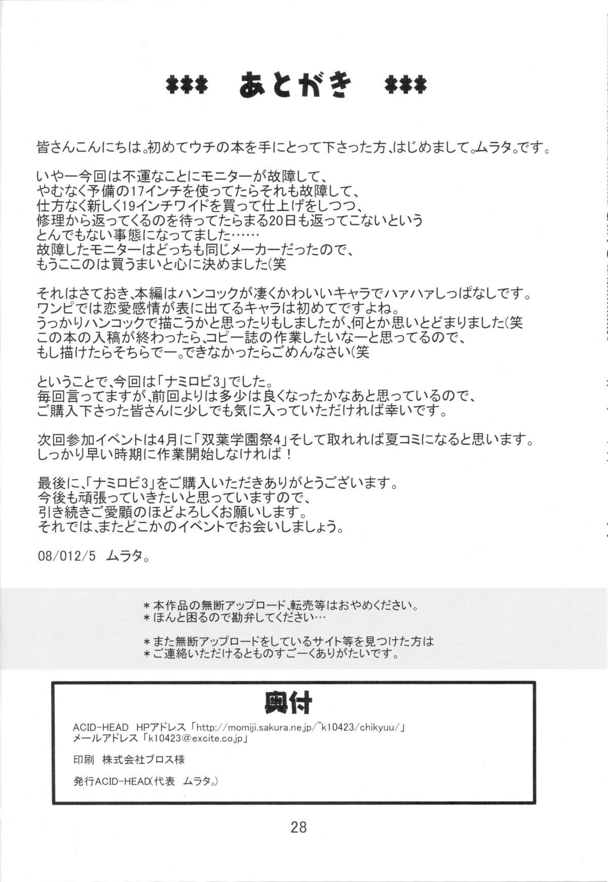 Nami no Koukai Nisshi EX NamiRobi 3 28
