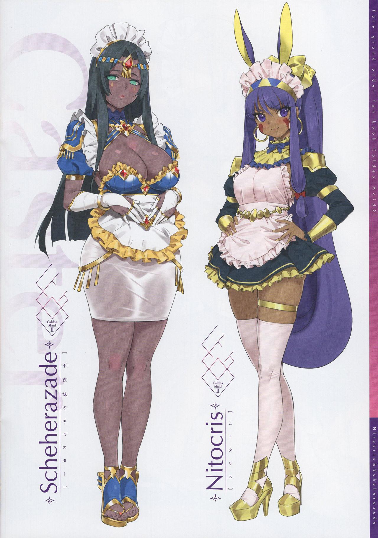 Chaldea Maid II 12