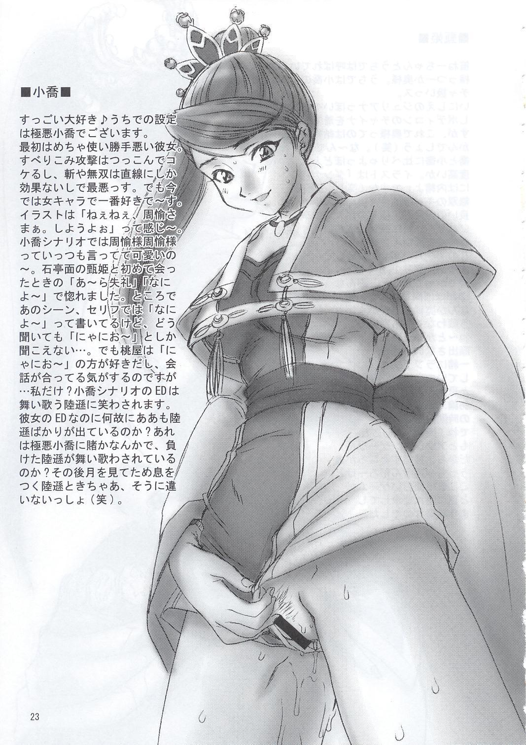 In Sangoku Musou 21