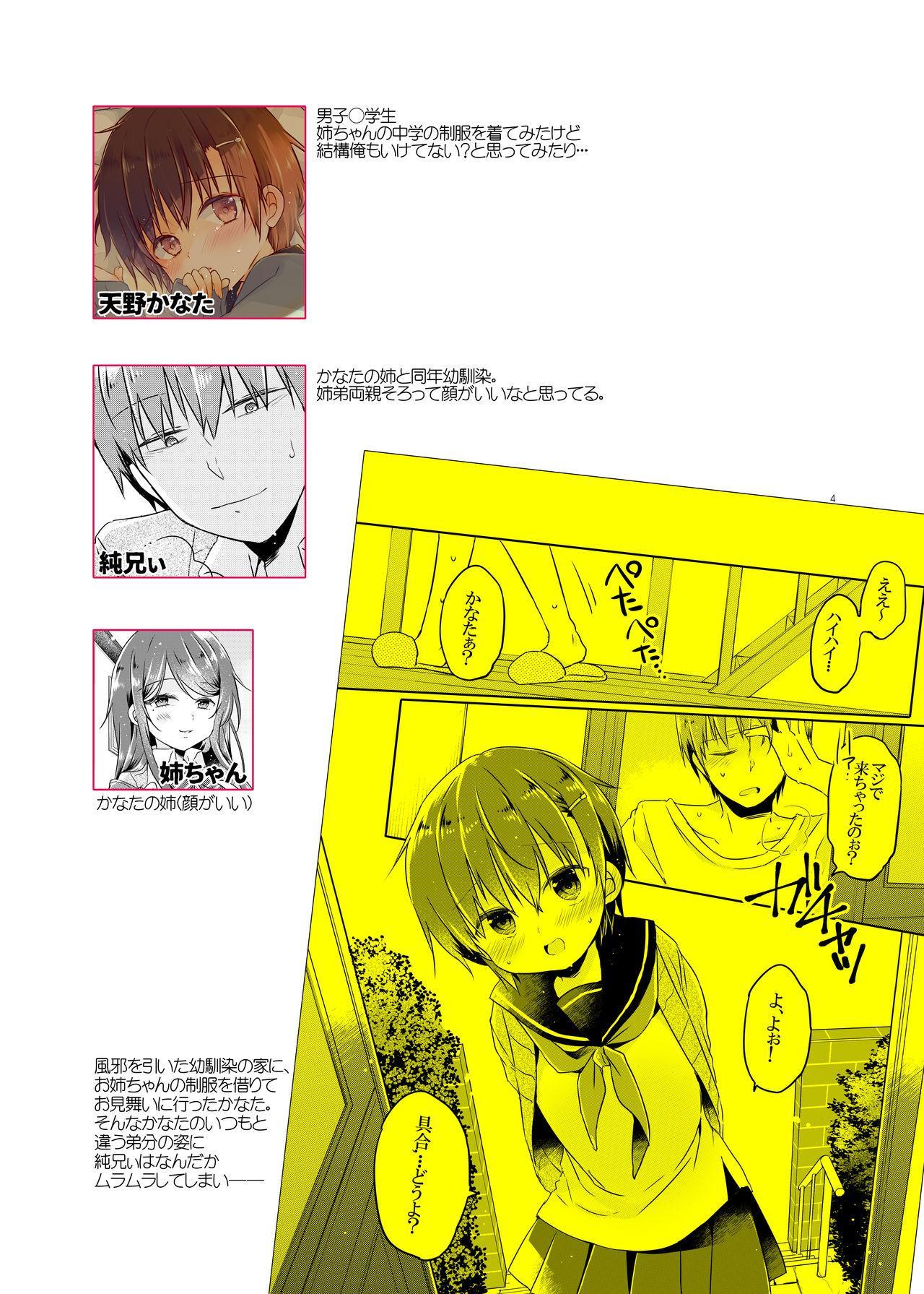 Totsugeki! Rinka no Josou Shounen 2 2