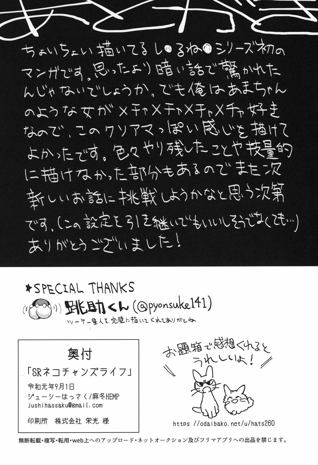 SR Neko-chans Life 22