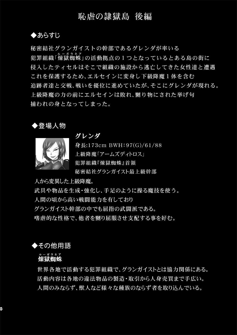 Raygis Valicess Elsain Hajigyaku no Reigokutou Kouhen 2