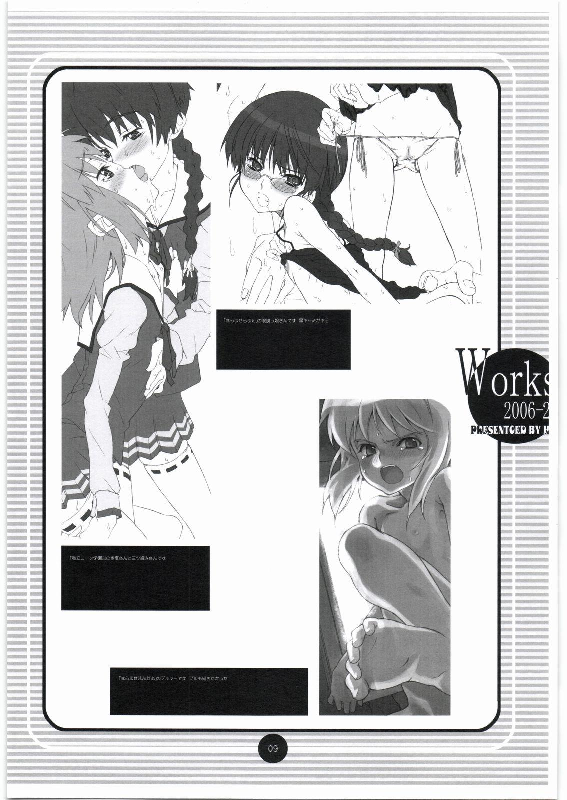 Works 2006-2007 5