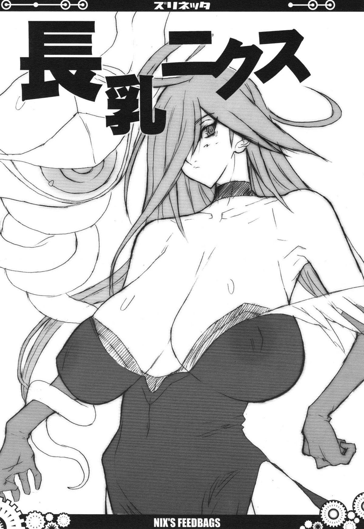 (C77) [VARIABLE? (Yukiguni Eringi)} Zurinetta (Various) 72