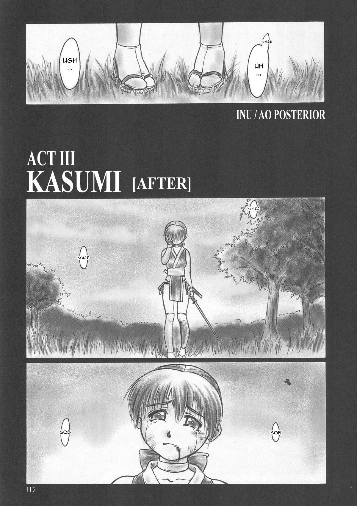 INU/AO Posterior 3