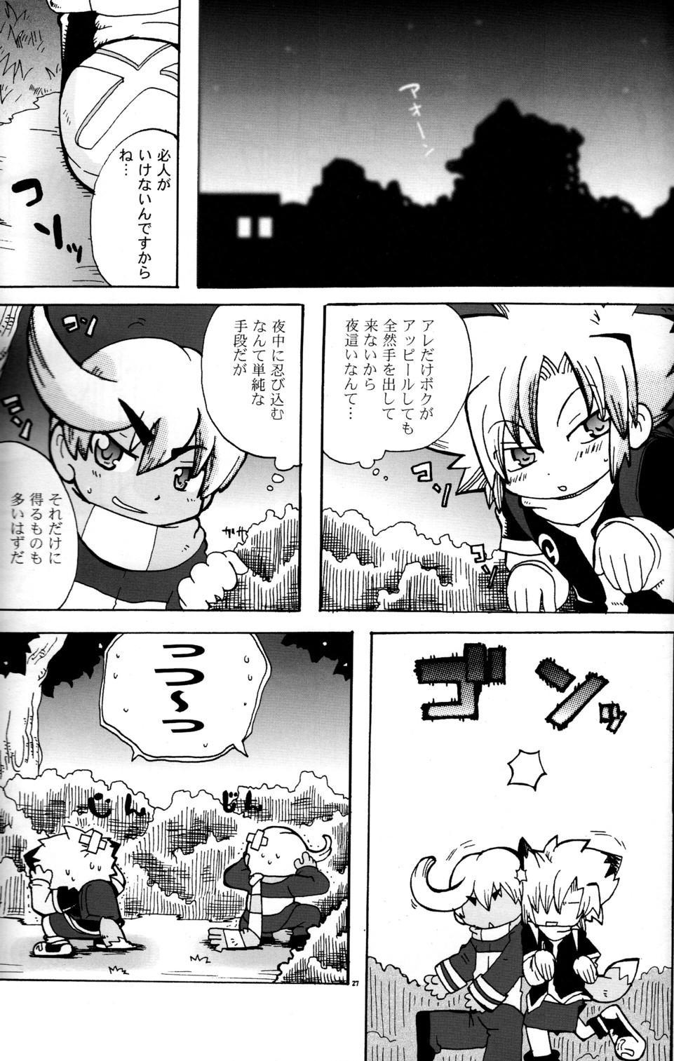 Baka no Shojo 24