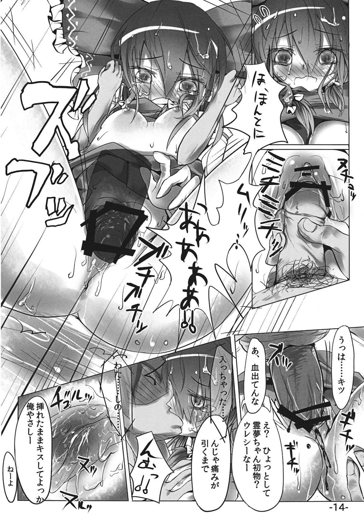 Sashiosae Reimu 13