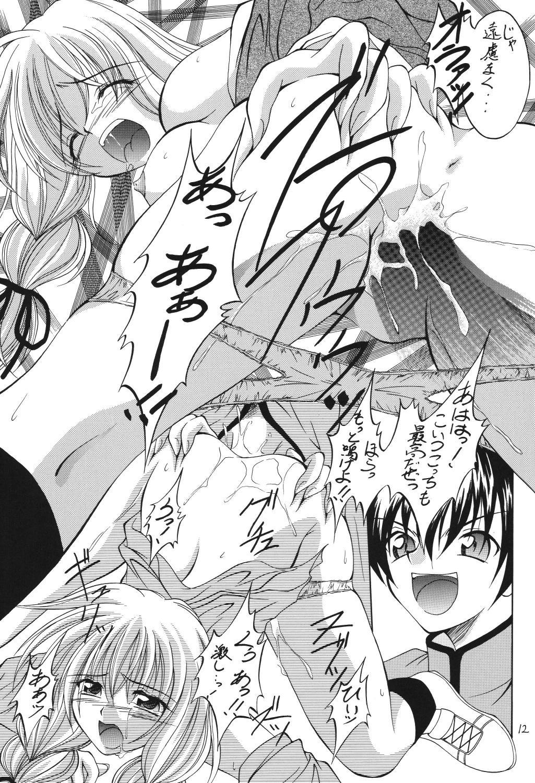 (C69) [RED RIBBON REVENGER (Makoushi)] Valhalla ~ Dainishou~ Fuyu no Arashi (Spiral) [Digital] 11